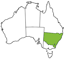 Map of Australia highlighting New South Wales