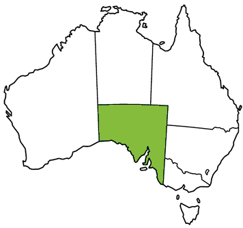 Map of Australia highlighting South Australia